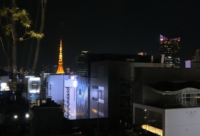 GINZA SIX 銀座シックス 屋上庭園 ROOFTOP GARDEN 夜景 東京タワー 虎の門ヒルズ