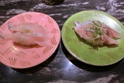 東急プラザ銀座 回転寿司 根室花まる