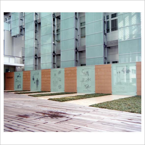 名古屋市大 外壁