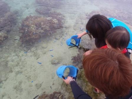 沖縄家族旅行で楽しむおまかせ海ツアー