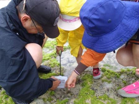 家族で沖縄の海辺のピクニックツアー