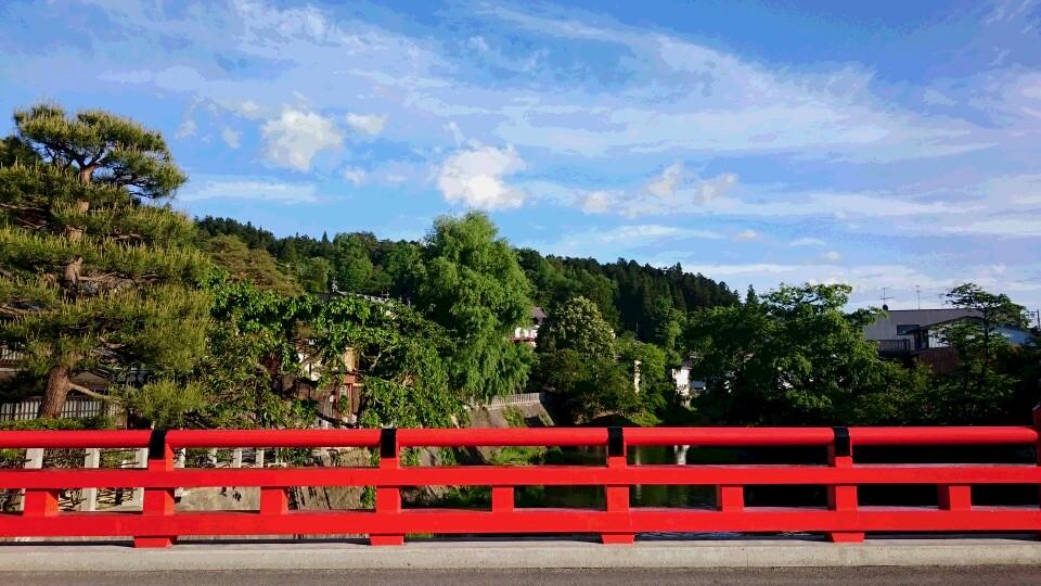 新緑と中橋