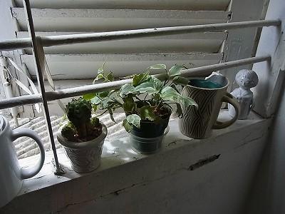 ホーチミン 窓辺