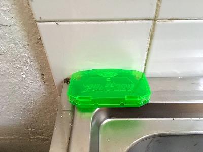 ベトナムでアリの巣コロリ