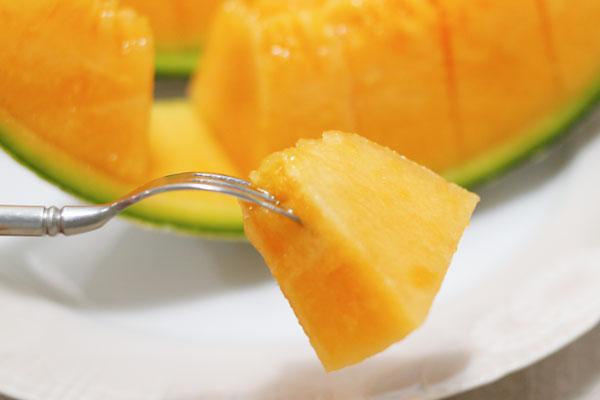 melon05.jpg