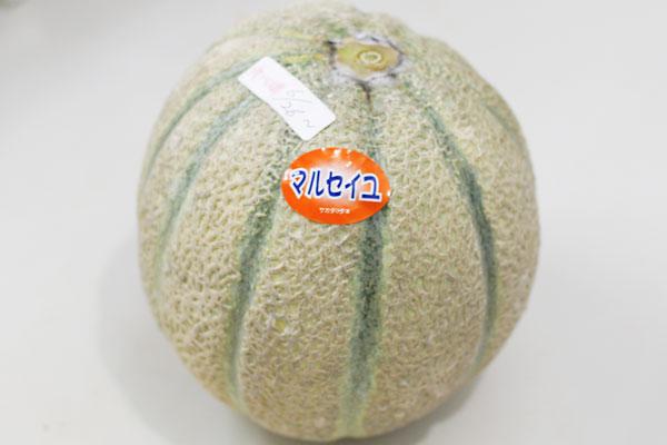 melon02.jpg