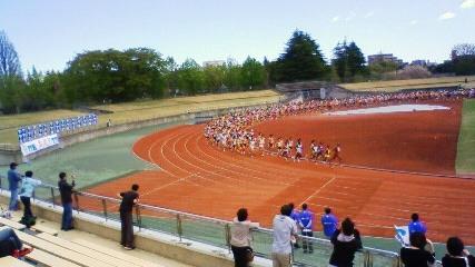2010仙台国際Hマラソン男子スタート