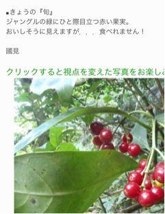 20120309204630_0.jpg