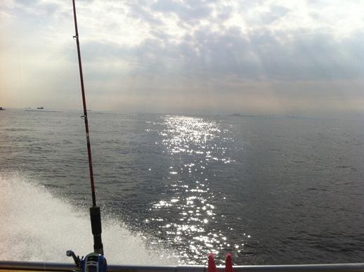 盛夏の東京湾