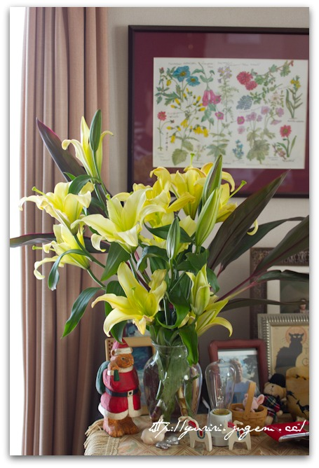 20110327いただいた花.jpg
