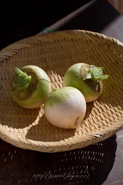 20111213 チャーミーさんちの野菜たち-13.jpg