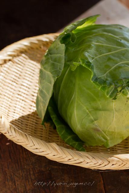 20111213 チャーミーさんちの野菜たち-10.jpg