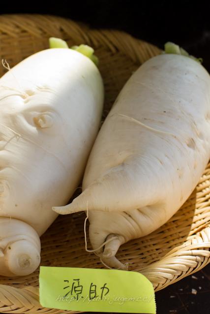 20111213 チャーミーさんちの野菜たち-9.jpg