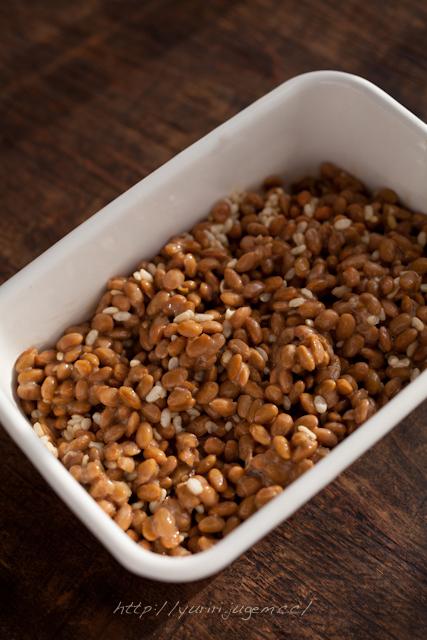 20120118 納豆&玄米塩麹.jpg