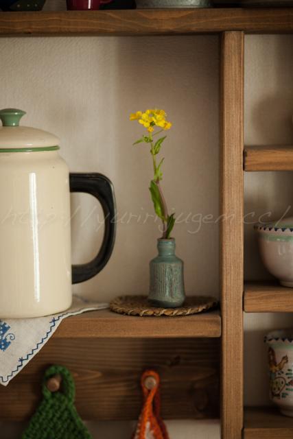 20140428菜の花.jpg