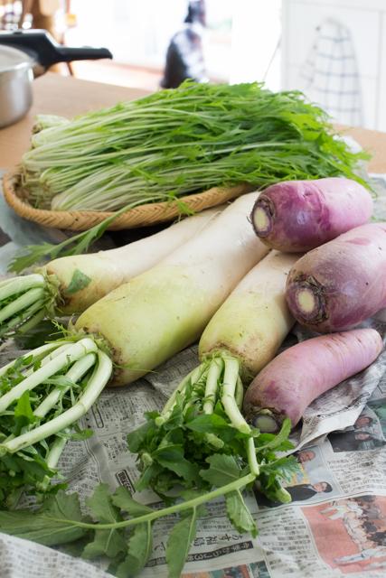 20141110野菜-4.jpg