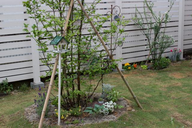 20150519雨の庭-21.jpg