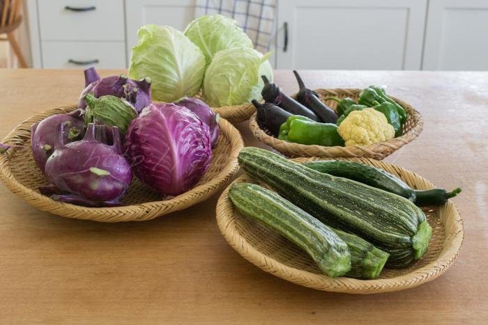 20170705収穫野菜.jpg