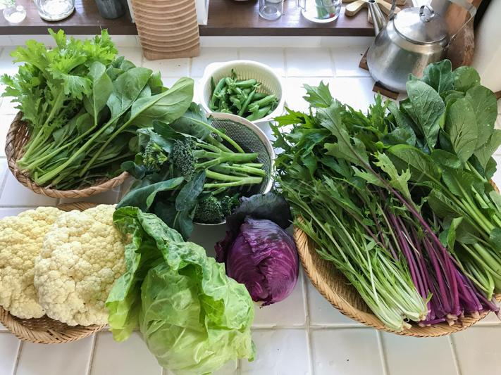 20180525野菜.jpg