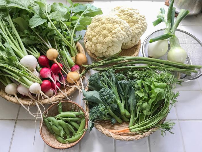 20180524野菜.jpg