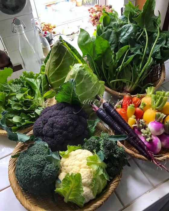 20191208 収穫野菜.jpg