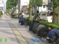 20120606種蒔き(ひまわり通り)3
