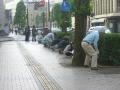 2012種蒔き(ひまわり通り)4