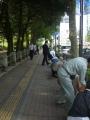 20120605種蒔き(市電通り)