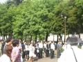 20120605種蒔き(市電通り)2