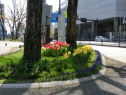 城址公園201304(1)