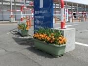 富山駅前201304(1)