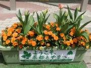 富山駅前201304(2)