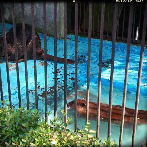 2012-07-08-23-12-04_deco.png