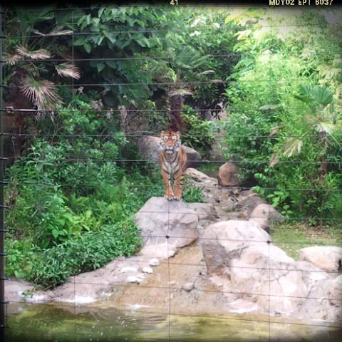 2012-07-08-23-22-01_deco.png