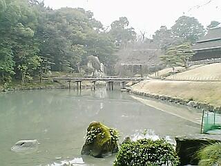 20070210_320893.jpg
