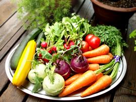 20080611野菜