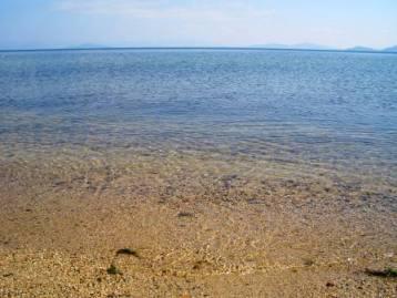 きれいな琵琶湖