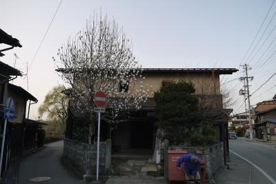 P1010714.JPG