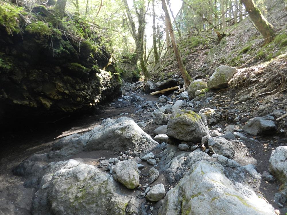 河床の熔岩流がむき出しになった日沢
