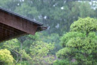 動画変換編 雨の写真