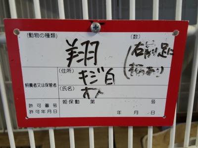 s-20151014_163652.jpg