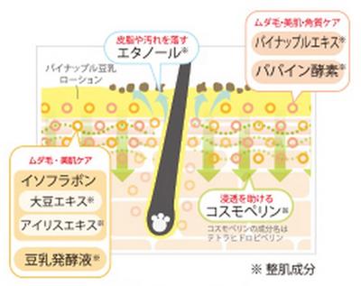 鈴木ハーブ研究所のパイナップル豆乳ローションの効果説明図