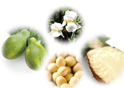 鈴木ハーブ研究所のパイナップル豆乳ローションに含まれる原料