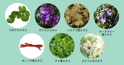鈴木ハーブ研究所のパイナップル豆乳除毛クリームに含まれている7種類のハーブ