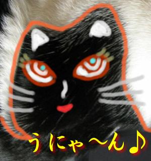 黒猫がおんねん
