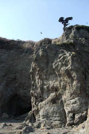 高い崖(落石注意)