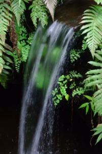 水神様上社の滝