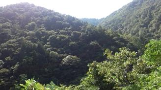 国見岳5【ブログ用】.jpg