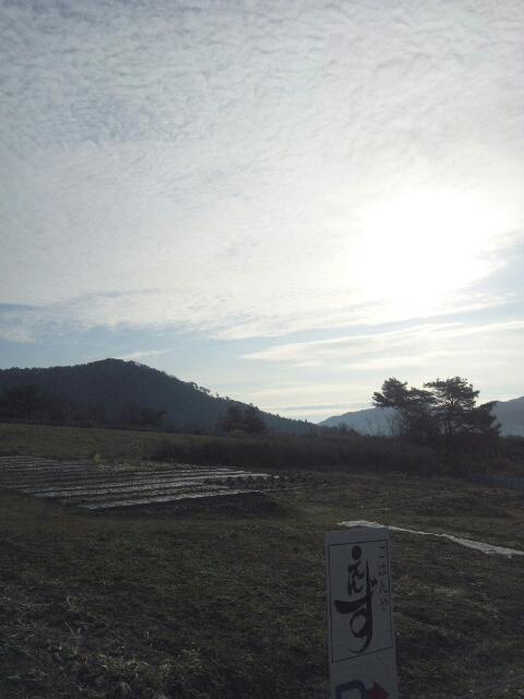 20130121_104230.jpg
