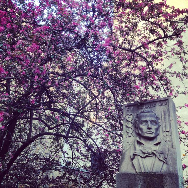 巴黎的春天来了&#9834